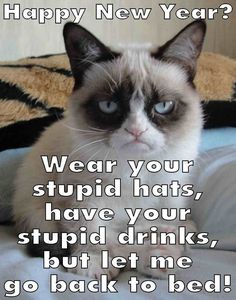 Happy new years - viral viral videos Funny New Years Memes, New Year Jokes, Funny Cat Memes, Funny Quotes, Grumpy Cat Meme, Grumpy Kitty, Grumpy Cat Christmas, Year Quotes, Videos Funny