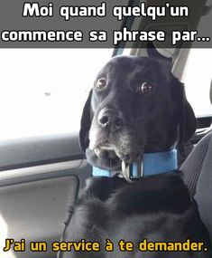 moi quand quelqu'un commence sa phrase par : j'ai un service à te demander !