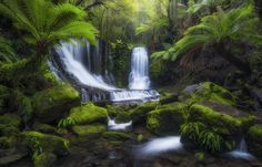 One of, if not, the most photographed waterfall in Tasmania.  Horseshoe Falls at Mount Field National Park.  It is such a photogenic scene, you can not really go wrong.