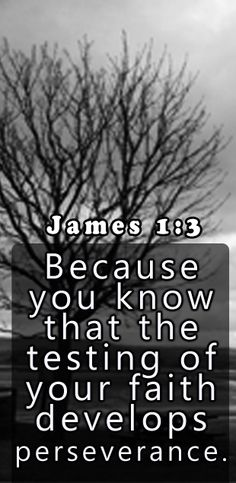 Know that the testing of your faith produces patience . Things To Know, How To Know, God Is Good, Life Is Good, Bible Quotes, Bible Verses, James 1, Praise God, Amazing Grace