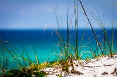 Serenity - A calm view of the white sands of Destin with the Gulf of Mexico behind it.