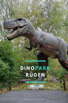 Our visit to Dinopark Rügen – - Holiday Plan Fotos Strand, Dino Park, Thanks Card, Staycation, Germany Travel, T Rex, How To Memorize Things, Journey, Children