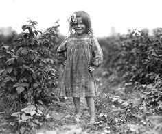 Little Berry Picker, 1909  Rock Creek, Maryland