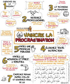 Infographies et vidéos | Musulman Productif