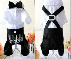 SlimArmor(TM) Puppy Wedding Suit Dog Shirt Pet Clothing Puppy Wedding Suit With Cute Bow Tie Clothes for small breeds [ White XL ] ** Learn more by visiting the image link. (This is an affiliate link) Small Dog Clothes, Puppy Clothes, Chihuahua Clothes, Dog Wedding, Wedding Suits, Tuxedo T Shirt, Groom Tuxedo, Tuxedo Suit, Pet Costumes For Dogs
