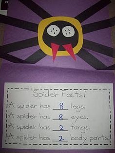 spider literacy lesson including math, science, reading, and writing. facts and craft