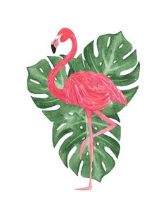 Watercolor Tropical Leaves Pink Flamingo by blueskywhimsy Watercolor Pencil Art, Watercolor Images, Flamingo Decor, Pink Flamingos, Flamingo Clip Art, How To Draw Flamingo, Flamingo Drawings, Printable Leaves, Mickey Mouse Wallpaper