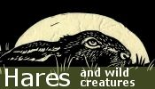 Click here to access our Hare products