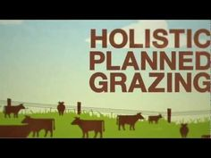 SAVORY INSTITUTE: HOLISTIC PLANNED MANAGEMENT