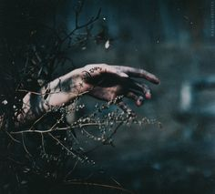 Growing Through Grief by NataliaDrepina.deviantart.com on @DeviantArt