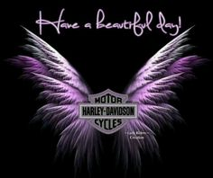 Harley wings or better than the Lupus butterfly.