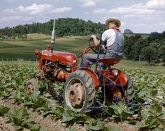 Tractor of the Week #4 ( The Farmall Cub ) 1947 to 1979. Post your Photo's and Stories