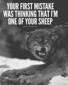 Your first mistake was thinking that i'm on of your sheep