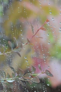 I love the sound of Rain drops!