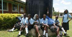 'Bolsa Escola' do Quênia usa vacas contra evasão escolar