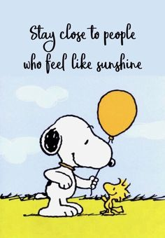 """Snoopy & Woodstock"" quotes quotes for teens quotes humor quotes inspiraitonal quotes sarcasm about love change about love crushes about love cute about love family about love for him about love soul mates Charlie Brown Et Snoopy, Meu Amigo Charlie Brown, Charlie Brown Quotes, Snoopy Et Woodstock, Snoopy Love, Living Your Life Quotes, Life Quotes To Live By, Snoopy Images, Snoopy Pictures"