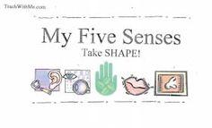 5 senses, science 5 senses, teaching the five senses, five senses activities, five senses lessons,
