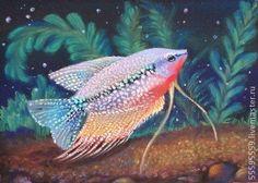 Pearl Gourami, vintage aquarium illustration