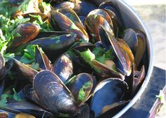 How to cook mussels at home!