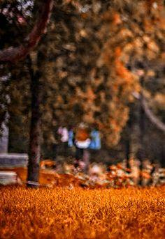Editing photo ashish wallpaper cb edit hd background images labzada t shirt viewletter co how to 500 hd background for editing all cb edits background hd manition bg Photo Background Images Hd, Blur Image Background, Blur Background Photography, Smoke Background, Studio Background Images, Background Images For Editing, Background Hd Wallpaper, Picsart Background, Photo Backgrounds