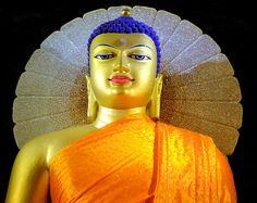 Seated Buddha Statue at Mahabodhi Temple, Bodh Gaya, Bihar, India - Flickr - Photo Sharing!