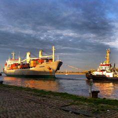 Antwerp, Schelde