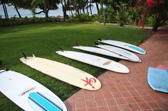 Peaks 'n Swells Surf Camp in Montezuma, Costa Rica - one of the world's Blue Zones (happiest places on earth).