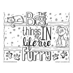 "Dog Cat Pet Coloring Page for Grownups. We love our pets! After all...""The best things in life are furry""! Color this fun downloadable coloring page by Jennifer Stay. It features a hand drawn cat and dog."