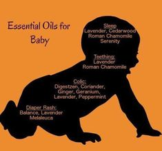 Find a Name for your Baby! - Rock Baby Names - Ideas of Rock Baby Names - Helpful Ginger Essential Oil Tips For ginger essential oils blends Rock Baby Names Ideas of Rock Baby Names Helpful Ginger Essential Oil Tips For ginger essential oils blends Essential Oils For Nausea, Essential Oils For Pregnancy, Essential Oils For Babies, Ginger Essential Oil, Essential Oil Uses, Natural Essential Oils, Young Living Essential Oils, Pregnancy Oils, Doterra Essential Oils