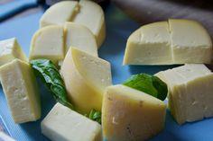 wady sera Cantaloupe, Dairy, Cheese, Fruit, Blog