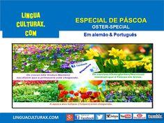 Vocabulário de Páscoa 4 (Ostern-Vokabular) Tumblr, German, Tulips, Daffodils, Deutsch, German Language, Tumbler