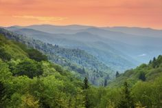 Great Smoky Mountains, U.S. | Discovered from Dream Afar New Tab