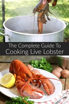 Learn everything you need to know about lobster. From purchasing to different co… Sponsored Sponsored Learn everything you need to know about lobster. From purchasing to different cooking methods. Cooking lobster at home couldn't be easier! Lobster Boil, Live Lobster, Lobster Dinner, How To Cook Lobster, Lobster Feast, Steamed Lobster, Healthy Eating Tips, Healthy Cooking, Cooking Tips