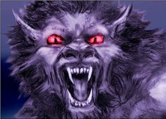 In the late 1980s and early 1990s, something strange was seen lurking along the roads near Elkhorn, Wisconsin.  Bray Road to be exact, which has since lent its name to the half wolf/half man beast that has been spotted.  It has become known as The Beast of Bray Road.  Although some believe this is just a ghostly tale of a demon that haunts the remote areas of the mid west, many believe that this creature is a werewolf of sorts that is a real animal.  Read the full story>>