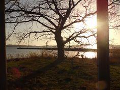 Die Sonne scheint über dem Greifswalder Bodden Island