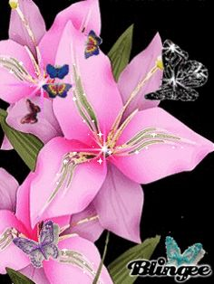 פרחים gif אנימציה - חיפוש con Google