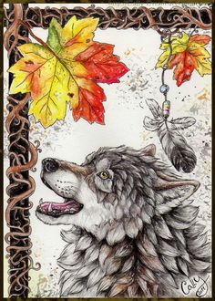 Trendy how to draw wolves realistic wolf sketch ideas Wolf Photos, Wolf Pictures, Pictures To Paint, Realistic Animal Drawings, Wolf Drawings, Person Sketch, Anime Wolf Drawing, Cartoon Wolf, Wolf Sketch