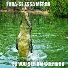 Memes Trollados (Humor no Google+) - Comunidade - Google+
