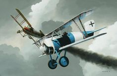 Siemans-Schuckert D.IV, fighter, 1918. . .