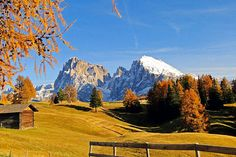Hiking tour Seiser Alm, Dolomites -   Langkofel and Plattkofel (UNESCO) - did it 2 weeks ago - Photo by Martin Bacher, Brixen, Italy