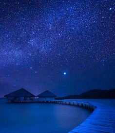 Bora Bora under the stars Tahiti . Bora Bora, Tahiti, Ways To Travel, Places To Travel, Dream Vacations, Vacation Spots, Oh The Places You'll Go, Places To Visit, Beautiful World