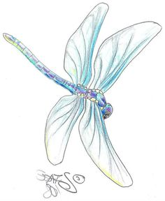 Explore photos on Photobucket. Dragonfly Drawing, Dragonfly Painting, Dragonfly Tattoo Design, Dragonfly Art, Tattoo Designs, Watercolor Dragonfly Tattoo, Watercolor Tattoos, Tattoo Ideas, Compass Tattoo