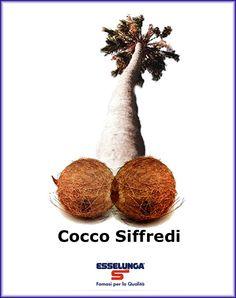 Cocco Siffredi.  Esselunga.
