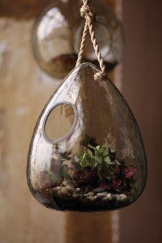 Recycled Glass Teardrop Terrarium...I'm thinking giftie~~