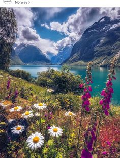 aroused Photo by ~ Beautiful summer day in Lovatnet, Norway. Beautiful World, Beautiful Places, Beautiful Scenery, Wonderful Places, Beautiful Nature Scenes, Natural Scenery, Amazing Nature, Nature Photos, Nature Images