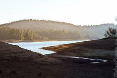 Sly Park/Jenkinson Lake