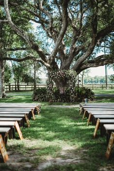 If you're searching for the perfect outdoor wedding, this Texas field might just be for you! With an open space, this lets you play with the layout of how you want your guests to sit and how you want them to be placed. For more head to the link to read now!  #weddingvenues #weddingideas #southernwedding #outdoorwedding