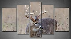 5 Panel Wall Art Whitetail Deer Buck In A Foggy Field Painting The Picture Print On Canvas Animal Pictures For Home Decor Decoration Gift piece (Stretched By Wooden Frame,Ready To Hang) Firstwallart