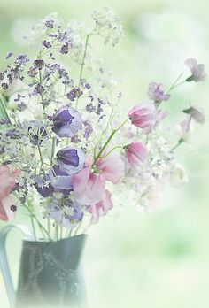 Find images and videos about flowers, pastel and spring on We Heart It - the app to get lost in what you love. My Flower, Wild Flowers, Beautiful Flowers, Pastel Flowers, Summer Flowers, Pastel Bouquet, Lavender Bouquet, Colorful Roses, Beautiful Beautiful