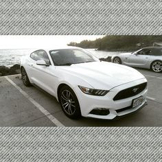 Would you rather drive the new mustang gt or the convertible Z4? #protecautocare